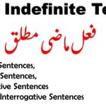 past indefinite tense with examples